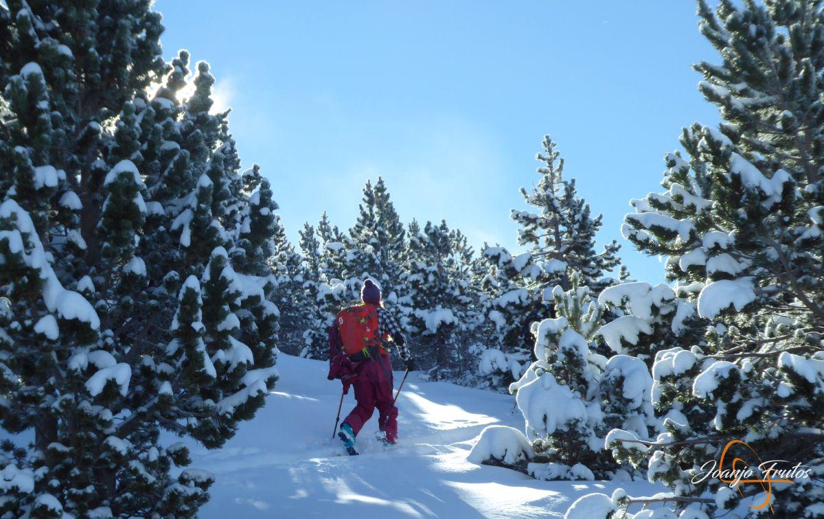 Esquiando en noviembre.